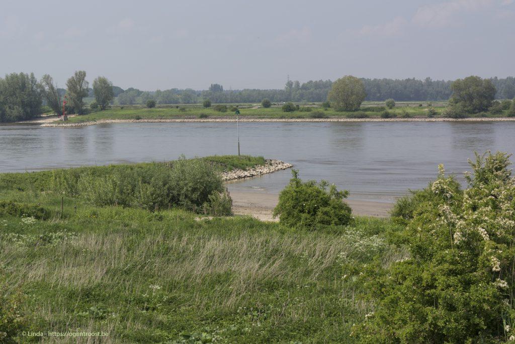 Ooijpolder-Waal