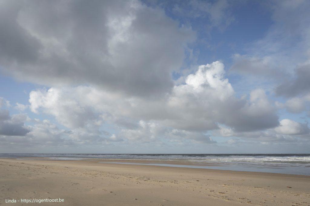 Het strand in januari