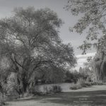 Liedermeerspark